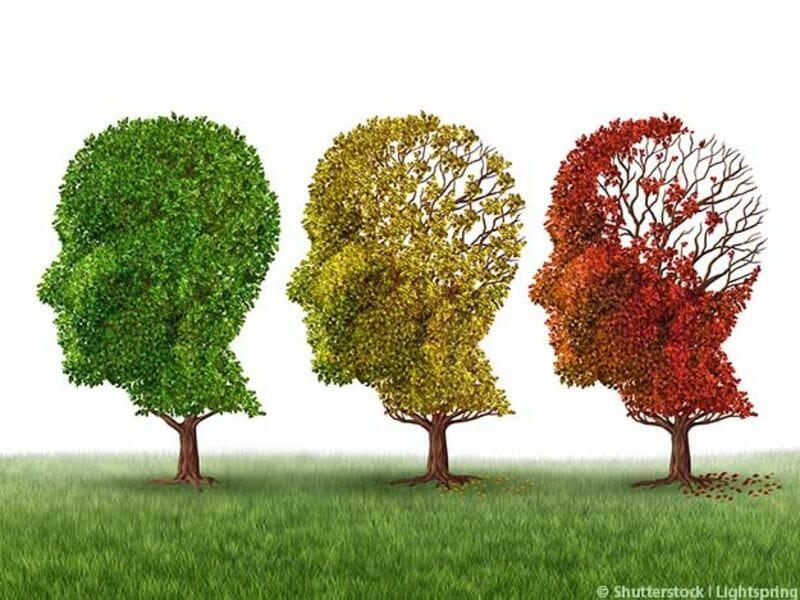 Demenz - Bäume